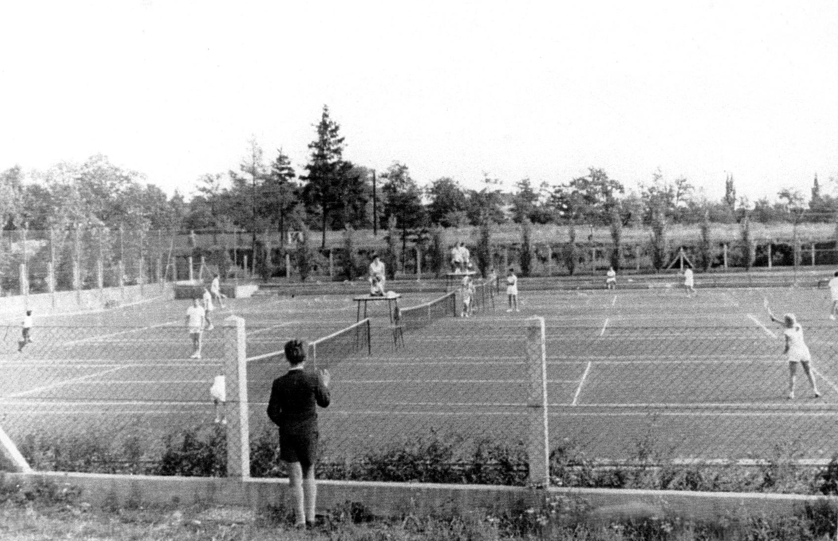 Der neue Tennisplatz im Schafferhofergarten